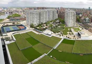 Urbanscape green roof